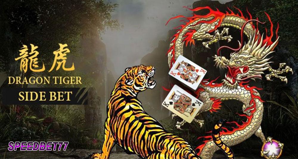 Aturan Judi Dragon Tiger Bandar Casino Online